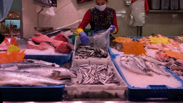 vídeos de stock e filmes b-roll de fresh fish and seafood organic fishmonger in market with ice - concha do mar
