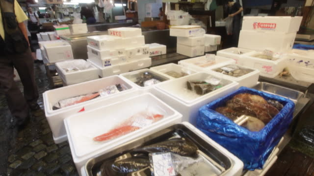 Fresh fish in containers for sale at the Tsukiji Market in Tokyo