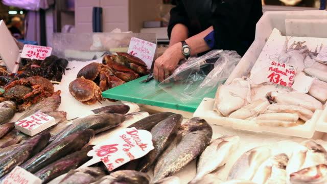 vídeos de stock e filmes b-roll de peixe fresco em um mercado de - grupo mediano de animales