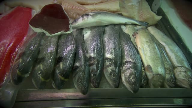 fresh fish on fish stall - sea bass stock videos & royalty-free footage
