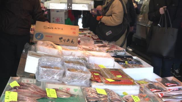 fresh fish processing at tsukiji fish market - fish market stock videos & royalty-free footage