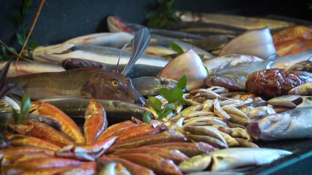 fresh fishes in the market - fish market stock videos & royalty-free footage