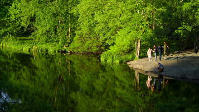 Fresh green trees and people reflect to Turtle Pond water surface at Central Park New York In spring.
