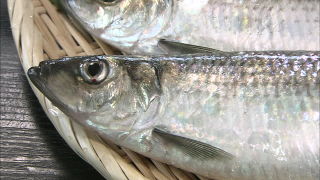 fresh herring lie in a wicker basket. - wicker stock videos & royalty-free footage
