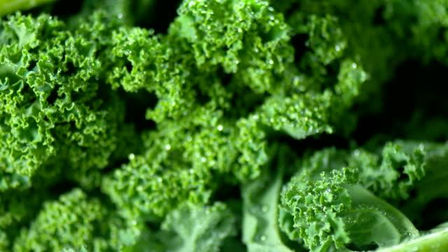 vídeos y material grabado en eventos de stock de frescas primer plano de col - antioxidante
