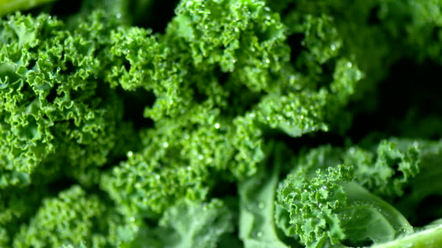 fresh kale close up - antioxidant stock videos & royalty-free footage