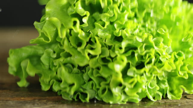 slo mo ds fresh lettuce falling on a table - freshness stock videos & royalty-free footage