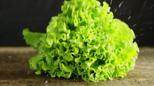 vídeos de stock e filmes b-roll de slo mo fresh lettuce falling on a table - alface