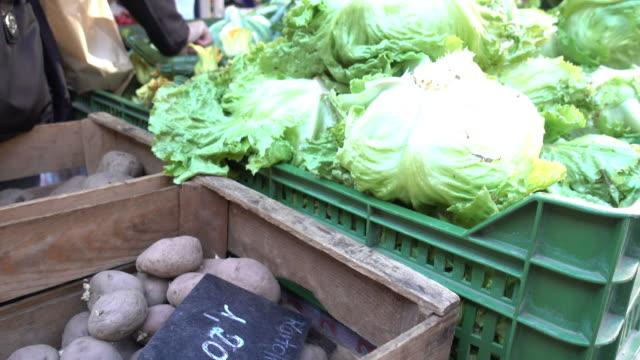 fresh market food - cibo biologico video stock e b–roll