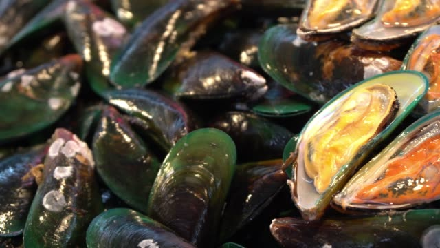 fresh mussels at the seafood market - french food market stock videos & royalty-free footage