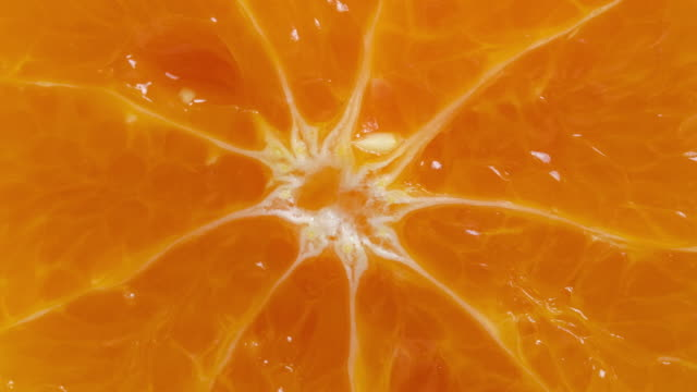 fresh orange slice - citrus fruit stock videos and b-roll footage