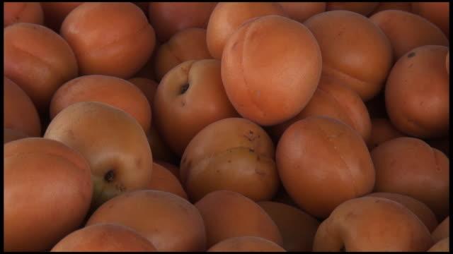 (hd1080i) fresh organic aprium: cross hybrid of apricot and plum - apricot stock videos & royalty-free footage