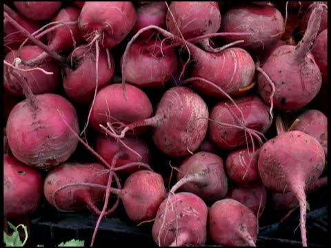 Fresh Organic Beets, Beetroot, Swiss Chard