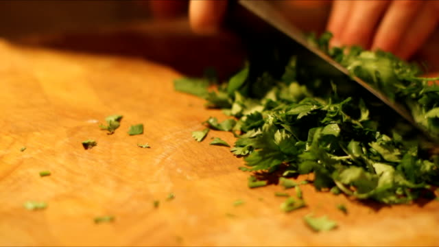 fresh organic cilantro - cilantro stock videos and b-roll footage