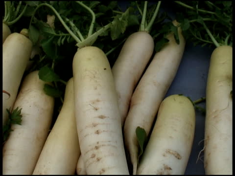 fresh organic daikon white radish / carrot - medium group of objects stock videos & royalty-free footage