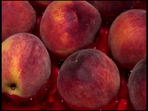 fresh organic debutante peaches - medium group of objects stock videos & royalty-free footage