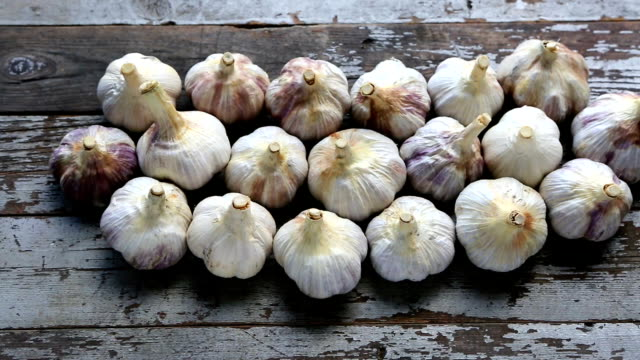fresh organic garlic bulb - garlic stock videos & royalty-free footage