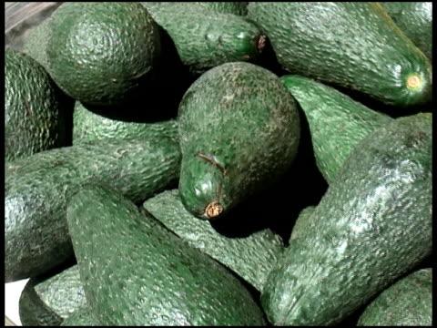fresh organic long avocados - letterbox format bildbanksvideor och videomaterial från bakom kulisserna