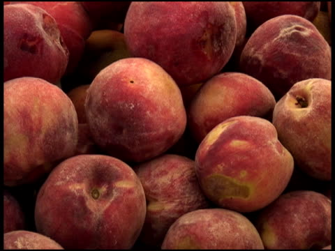 stockvideo's en b-roll-footage met fresh organic peaches - supersensorisch