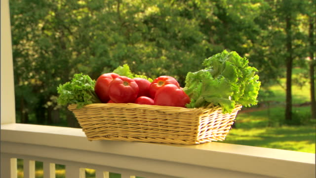 fresh organic produce in basket - see other clips from this shoot 1425 stock videos and b-roll footage