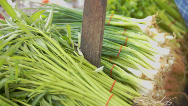 fresh organic scallions at the market - scallion stock videos & royalty-free footage