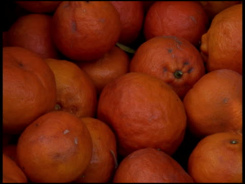 freschi biologici tangerines - disordinato video stock e b–roll