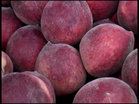 fresh organic white peaches - letterbox format bildbanksvideor och videomaterial från bakom kulisserna