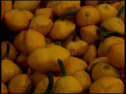 vídeos y material grabado en eventos de stock de orgánicos frescos squash/médula de color amarillo - calabaza no comestible