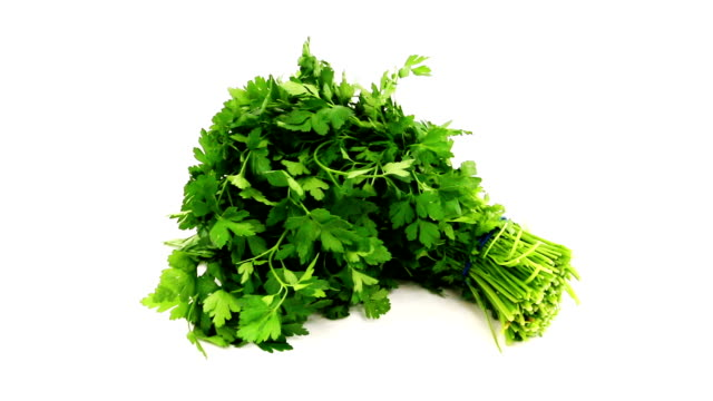 fresh parsley - parsley stock videos and b-roll footage
