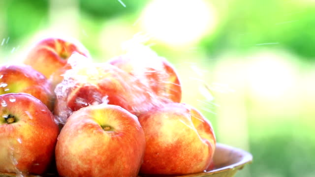 fresh peach plate - slow motion - peach stock videos & royalty-free footage