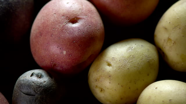 vidéos et rushes de gros plan des pommes de terre - pomme de terre rouge