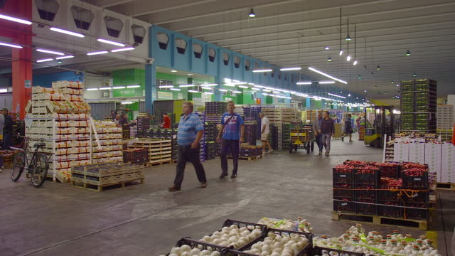 fresh produce refrigerated room in italy store, venezia - chain stock videos and b-roll footage
