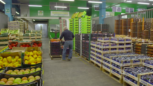 fresh produce refrigerated room in italy store, venezia - food and drink stock videos & royalty-free footage