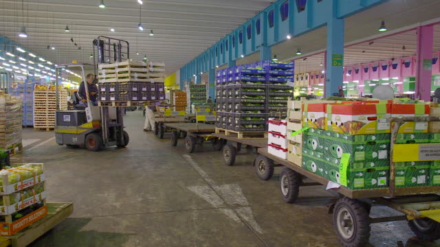 fresh produce refrigerated room in italy store, venezia - fruit stock videos & royalty-free footage