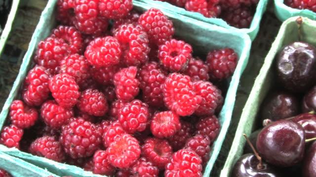 fresh raspberries (hd) - agricultural fair stock videos and b-roll footage