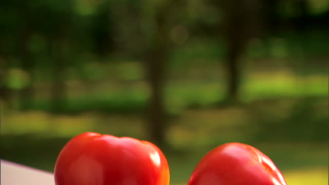 fresh ripe tomatoes - see other clips from this shoot 1425 stock videos and b-roll footage