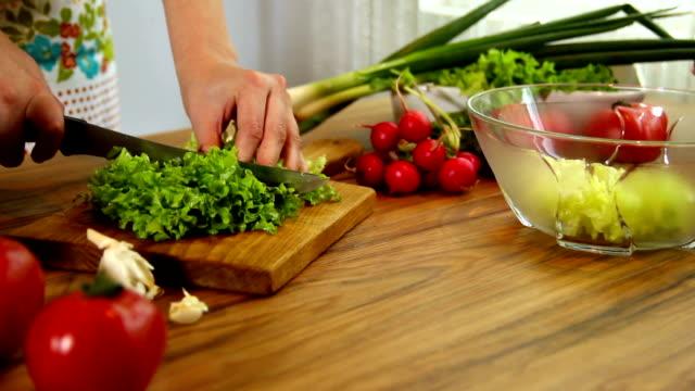 新鮮なの入ったサラダ ラディッシュ 、レタスやオニオンズ - 顕花植物点の映像素材/bロール