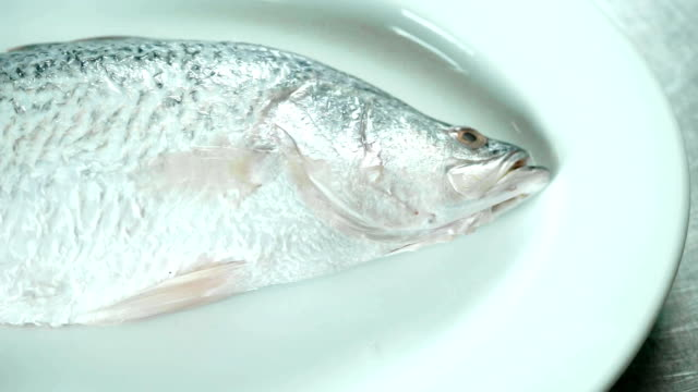 fresh seabass fish on white plate for cooking in the kitchen, scale and clean fish. - snapper fish stock videos & royalty-free footage