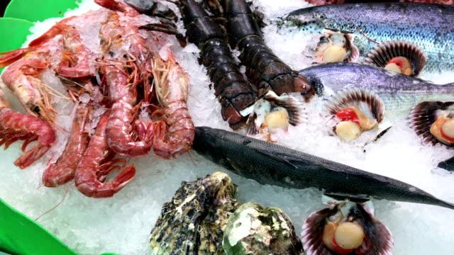 fresh seafood on ice at la boqueria market in barcelona - mediterranean culture stock videos & royalty-free footage