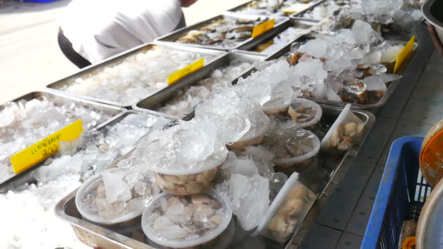 fresh seafood - oyster shell stock videos & royalty-free footage