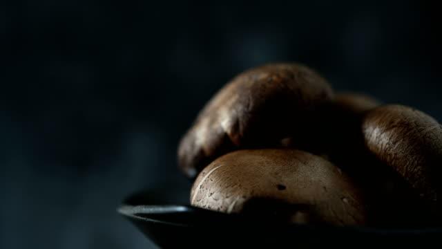 fresh shiitake mushrooms are good for the body. - mushroom stock videos & royalty-free footage