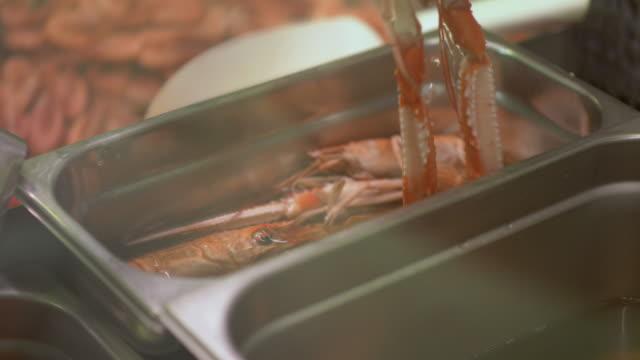 frischen schwedischen krebse zu verkaufen am fischmarkt - flußkrebs tier stock-videos und b-roll-filmmaterial