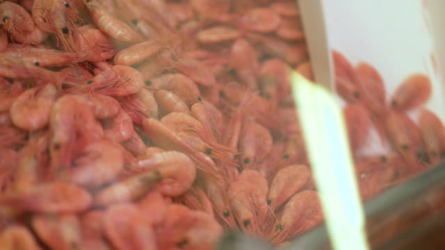 fresh swedish shrimp and crayfish for sale - swedish culture stock videos & royalty-free footage