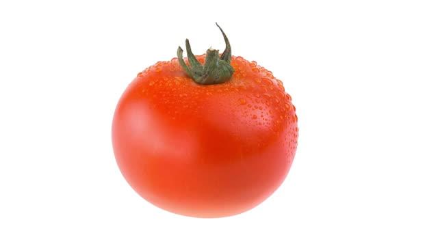 HD SCHLEIFE: Frischen Tomaten