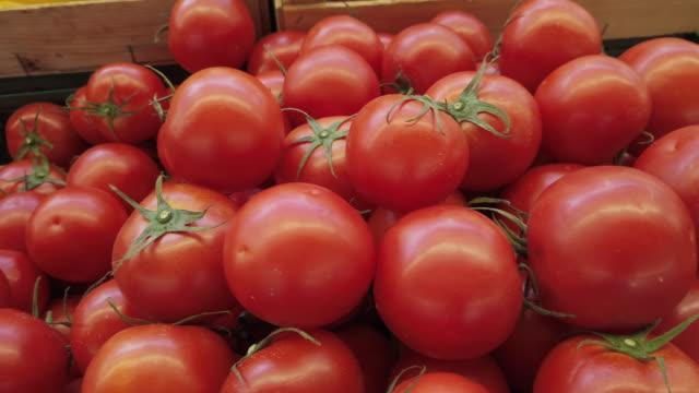 vídeos de stock, filmes e b-roll de tomates frescos na exposição do mercado do fazendeiro - tomato