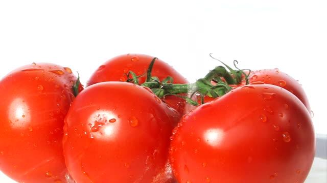 frische tomaten-gießen mit wasser - fünf gegenstände stock-videos und b-roll-filmmaterial
