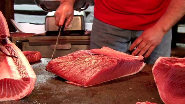 fresh tuna at the market place in palermo, sicily italy. - tuna seafood stock videos and b-roll footage