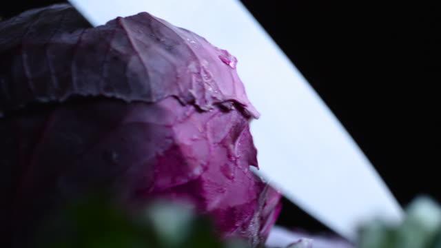 fresh veggie medley (4k) - lila stock-videos und b-roll-filmmaterial