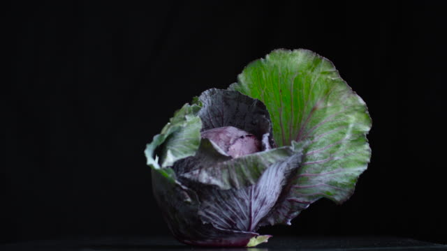 fresh veggie medley (4k) - red cabbage stock videos & royalty-free footage