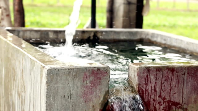 fresh water falling in irrigation canal - groundwater stock videos and b-roll footage